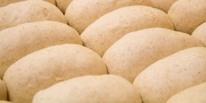 Fresh bread mixed, rolled, and baked by hand | Planet Sub | Sandwich Shop